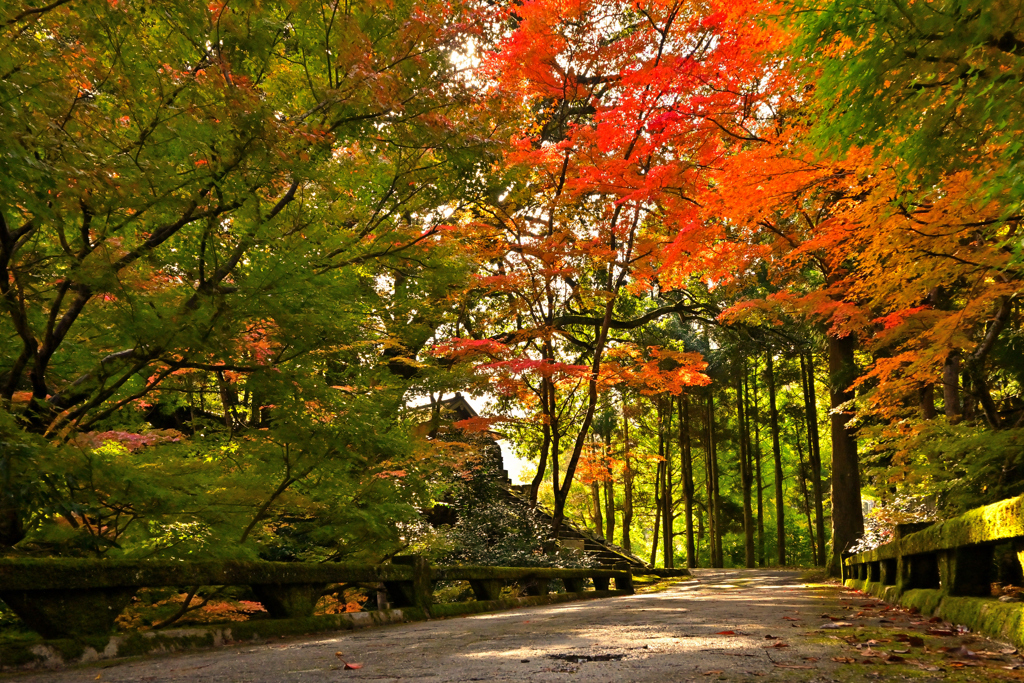 秋の奥出雲 10