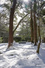 久しぶりの積雪―2