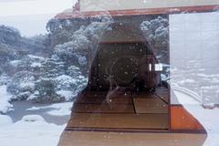 久しぶりの積雪―4