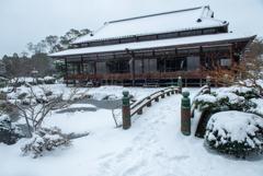 久しぶりの積雪―3