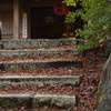 晩秋の呑山観音寺