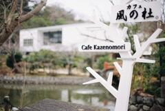 鎌倉文華館が見える喫茶店