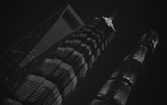 摩天楼はモノクロに