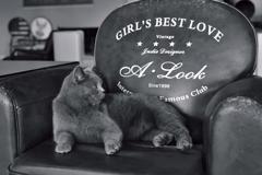GIRL'S BEST LOVE