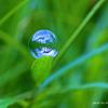 水の星 地球