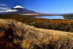 山中湖黄葉と富士