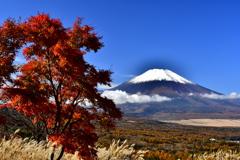 紅葉と富士 2