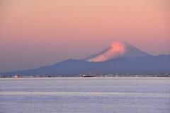 東京湾越しの富士朝景
