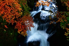 紅葉と水の流れ 2