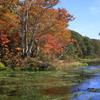 秋のグダリ沼 2