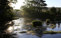 朝日とグダリ沼