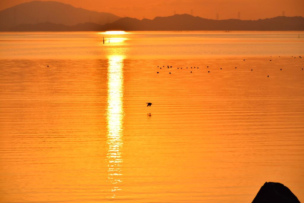 黄金色に輝く海