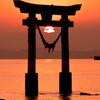 鳥居と夕日