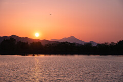 立岡池の夕日
