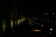 都の滑走路
