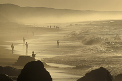 夏の朝の海岸