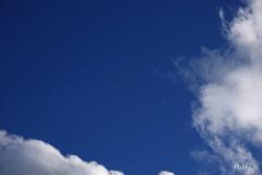 青と白〈月〉