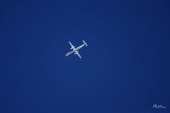 青と白〈飛行機〉
