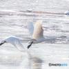 氷面を駆ける