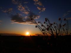 夕景 2002082