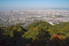 順光の大阪平野・ランドスケープ