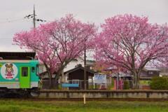 播磨横田駅にて