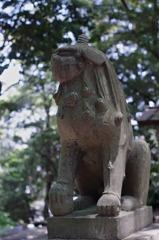 志賀神社狛犬 吽