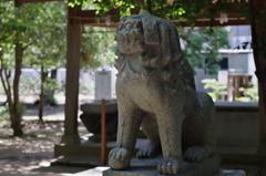 熊野神社狛犬 吽