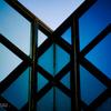 立体幾何学と青アゲハ