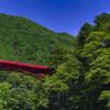 緑に囲まれた赤いアーチ