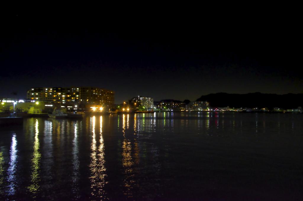夜の久里浜港