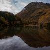 秋、山の色づき…