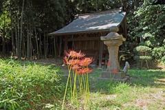 金沢文庫称名寺