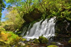 緑爽の水響