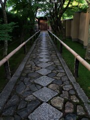 光悦寺の細い参道