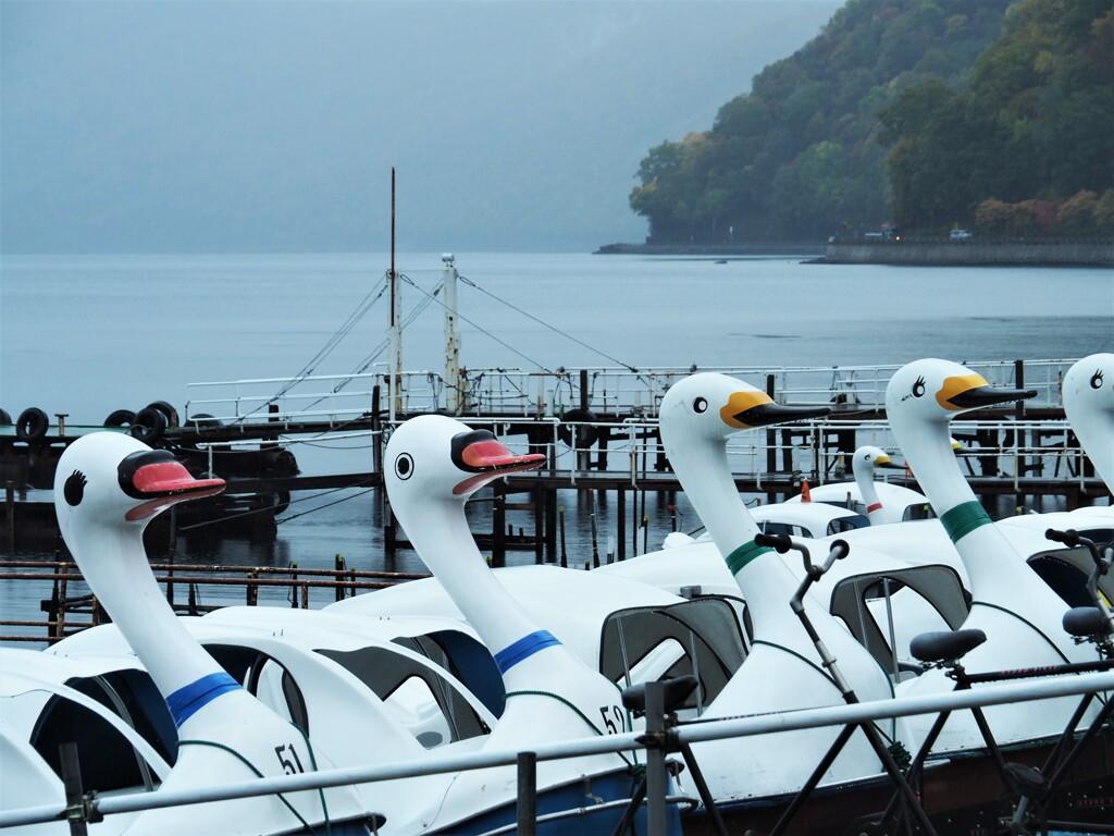 支笏湖で遊ぶ(2)