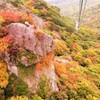 紅葉の中を空中散歩