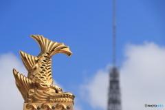 金鯱とテレビ塔