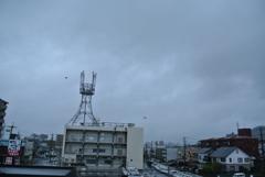 台風接近中!!!