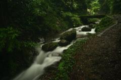 萩の滝 (4)1