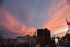 締めは夕陽で! 6/20