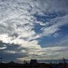 もうすぐ梅雨明け 1