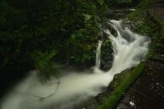 萩の滝 (3)1