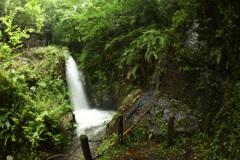 萩の滝 (8)