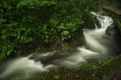 萩の滝 (2)1