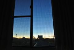 窓の向こう!