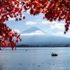 紅葉と富士