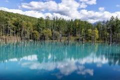 青すぎる池