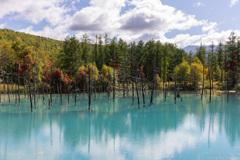秋の青い池