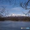 駒ヶ岳(公魚島)